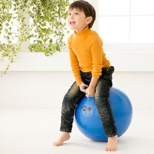 Weplay跳球 - 55cm
